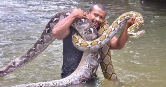 애완용 비단뱀들과 물놀이하는 말레이시아 남성. 페이스북 캡처