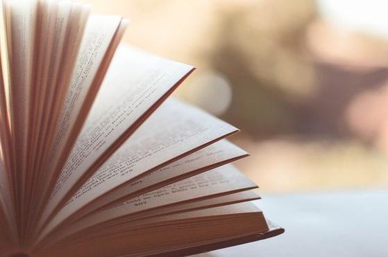 제2의 인생을 준비하는 과정에서 사진과 수필을 알게 되어 얼마나 다행인지 모르겠다. 끝없이 배우면서 사는 것이 남은 삶의 나아갈 방향이자 즐거움이라 생각한다. [사진 pixabay]