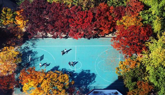 완연한 가을 날씨를 보인 30일 오후 서울 영등포구 여의도의 한 농구장에서 시민들이 야외활동을 즐기고 있다. 뉴스1
