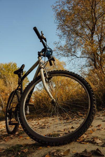 자전거로 사람을 다치게 하면 민사상 손해배상책임을 부담하는 것 외에 형사처벌까지 받을 수도 있다. [사진 pixnio]