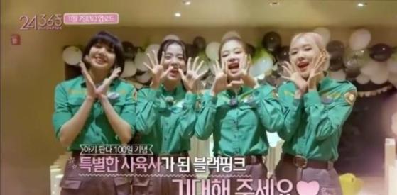 블랙핑크는 지난 4일 유튜브에 한국 에버랜드 동물원에서 촬영한 '1일 판다 사육사 체험' 영상을 게재했다. [웨이보 캡쳐]