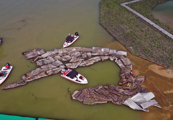 지난달 강원 춘천시 의암호에서 지난 8월 6일 떠내려가 파손된 인공수초섬 일부를 중도 배터로 옮기는 작업을 하고 있다. 연합뉴스
