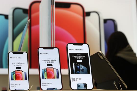 아이폰12 미니와 프로 맥스가 국내 정식 출시한 20일 오후 서울 중구 프리스비 명동점에서 고객들이 기기를 체험하고 있다. [연합뉴스]