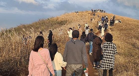 21일 제주 새별오름에 관광객이 몰려 거리두기를 제대로 지켜지 않는 모습. 일부 시민은 마스크를 내리고 사진을 찍었다. 독자제공