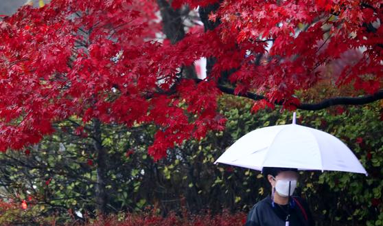 지난 18일 오후 대전 서구 보라매공원에서 시민들이 우산을 쓰고 발길을 재촉하고 있다. 뉴스1