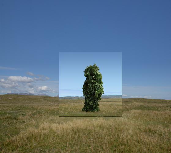 존 제라드,, 거울 파빌리온: 나뭇잎 작업 (데리김라), 2019, 프로덕션 스틸, 작가 제공. [사진 광주비엔날레]