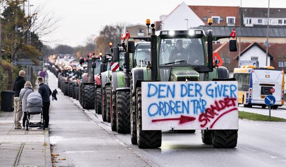 지난 14일(현지시간) 덴마크 밍크 농가들이 살처분 명령에 항의하며 트렉터 시위를 하고 있다. [AP=연합뉴스]