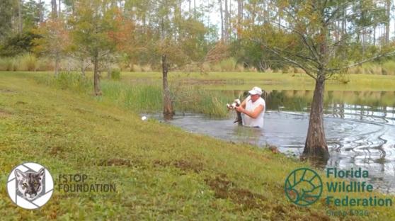 지난 10월 말 미국 플로리다주에서 한 남성이 맨손으로 악어의 입을 벌려 반려견을 구출하는 일이 있었다. [CNN 영상 캡처]