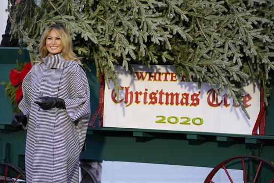 멜라니아 트럼프 여사가 23일(현지시간) 백악관에 도착한 크리스마스 공식 트리 옆에 서 있다.[AP=연합뉴스]