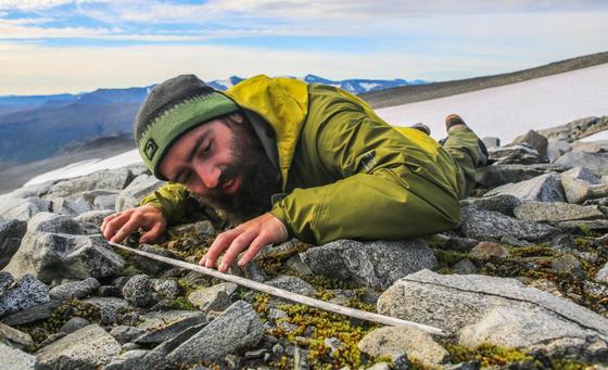노르웨이 랑폰의 빙하에서 발견된 나무 화살을 연구진이 조사하고 있다. [사진 인란데주]