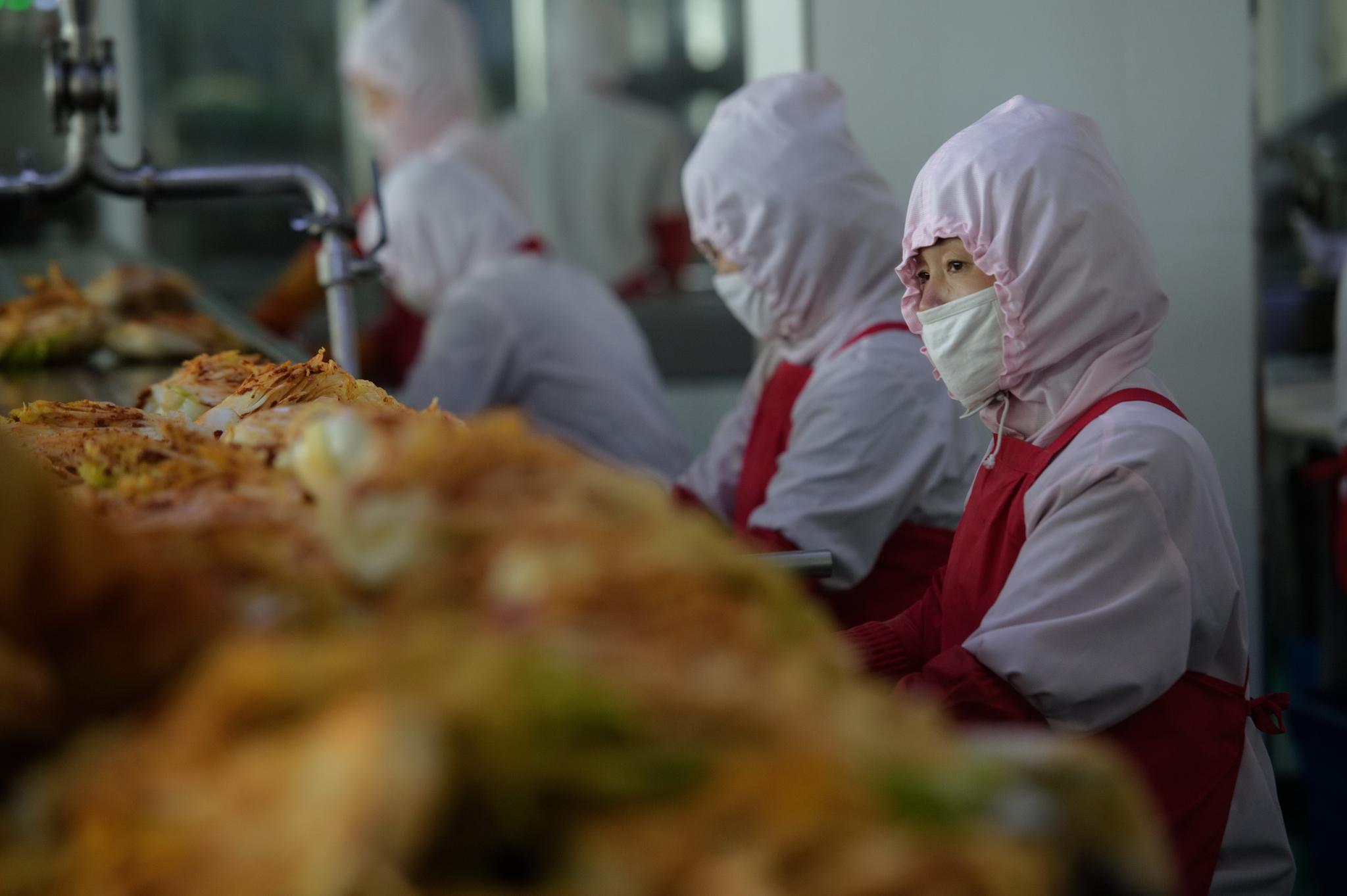 1일 북한 평양의 류경김치공장에서 여성 근로자들이 김치 생산라인에서 통배추 김치를 만들고 있다. AFP=연합뉴스