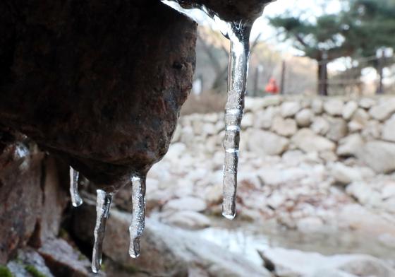 경기도 양주시 북한산 국립공원 송추계곡 등산로에 고드름이 열려 있다. 뉴스1
