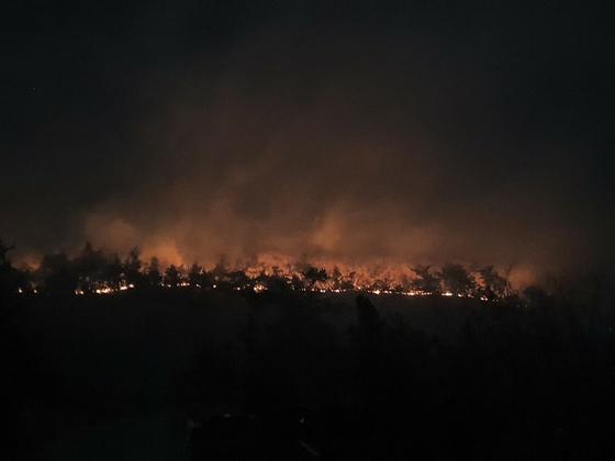 지난 3일 오후 11시 16분께 고흥군 금산면 한 야산에서 발생했다. 불은 약 10시간 만에 꺼졌고 현장 주변에서는 숨진 남성 1명과 번개탄이 1t 트럭 내부에서 발견됐다. 사진 전남소방본부