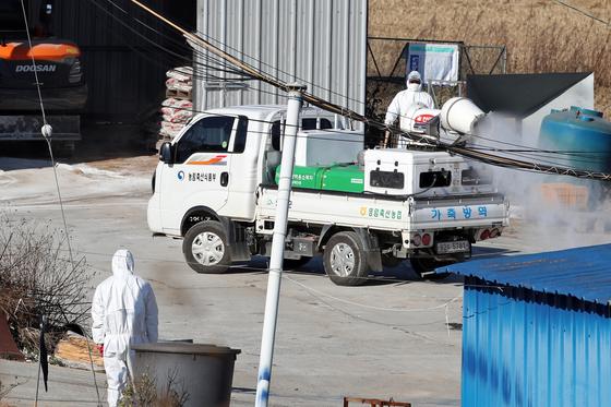 6일 전남 영암의 한 오리 농장에서 방역 당국이 소독 작업을 하고 있다. 뉴스1