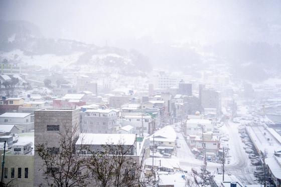 15일 오후 울릉도 곳곳에 눈이 펑펑 내리고 있다. [사진 울릉군]
