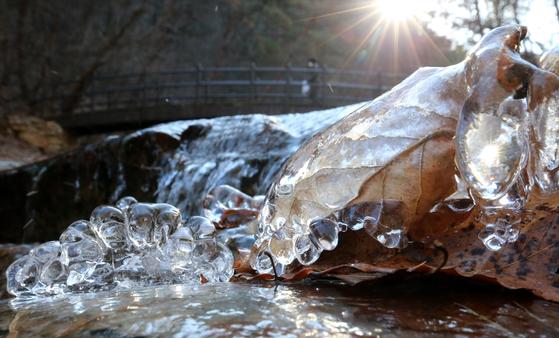 영하의 추운 날씨를 보인 지난 14일 오후 대전 유성구 계룡산국립공원 내 수통골 계곡에 얼음이 얼어 있다. 뉴스1
