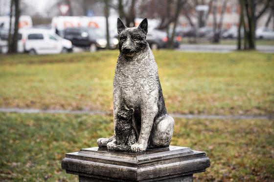 에스토니아 탈린 칼라마하 지역의 한 쇼핑센터 앞에 떠돌이 개 '조릭'의 동상이 세워져 있다. AP=연합뉴스