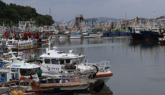 지난 8월 전남 목포항에 선박들이 들어가 있는 모습. 연합뉴스