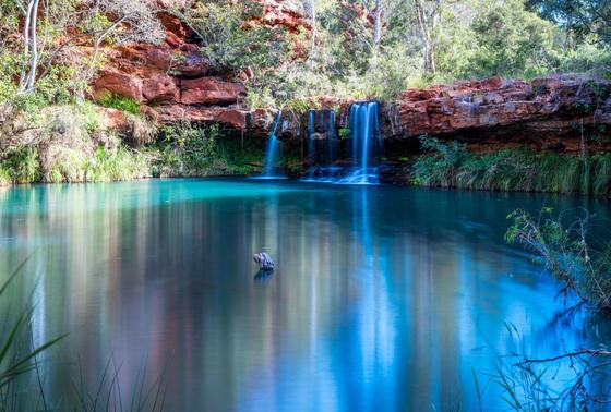 호주 카리지니 국립공원 페른 풀(Fern Pool).[서호주관광청]