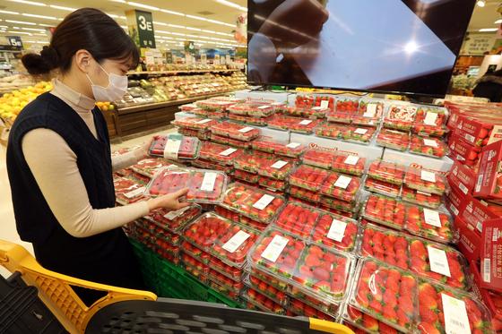딸기 귤, 겨울 과일 껍질을 밀어