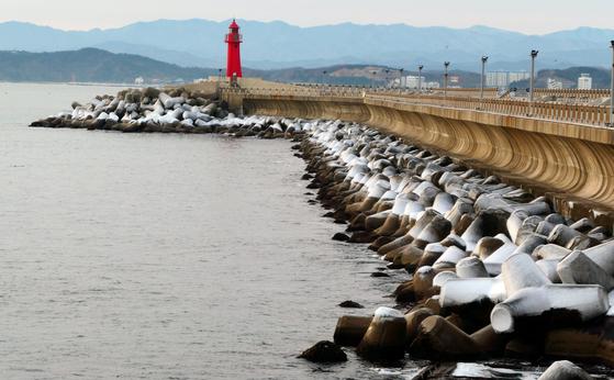 11일 강원 속초시 대포동 외옹치항 인근 테트라포드위에 얼음이 얼어 있다. 뉴스1