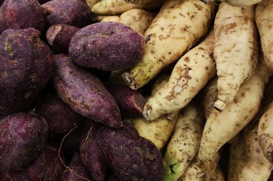 인간이 이용할 수 있는 다당은 포도당이 빌딩블록인 각종 곡류, 감자, 고구마 등 서류(薯類) 속 전분뿐이다. [사진 pixabay]