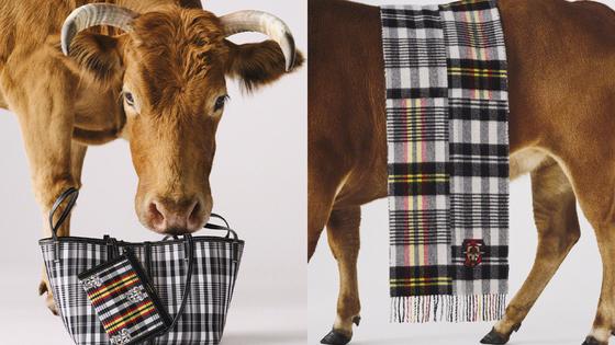 영국 브랜드 '버버리'가 중국 및 아시아권을 겨냥해 출시한 소의 해 컬렉션. 사진 버버리 홈페이지
