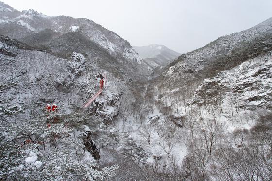현수교 전망대에서 내려다본 강천산 군립공원. 새빨간 현수교 말고는 완벽한 흑백 세상이다.