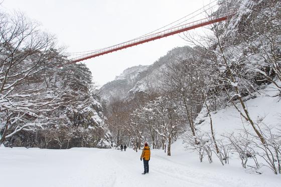 지난 1월 6~7일 많은 눈이 내린 전북 순창 강천산 군립공원. 지난해 12월 말부터 누적 적설량이 30cm를 훌쩍 넘는다.