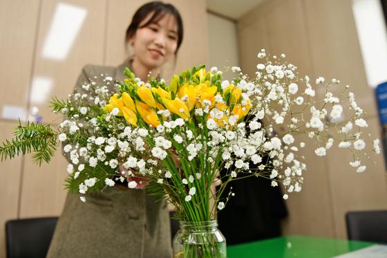 지난해 2월 14일 충남 홍성군이 신종 코로나바이러스 감염증(코로나19) 여파로 어려움을 겪는 화훼농가를 돕기 위해 직원들에게 꽃을 선물했다. 연합뉴스