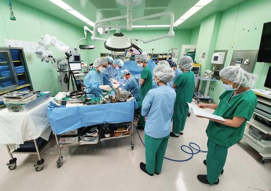 팔 절단된 62세, 뇌사자 팔 이식 성공…법적 허용 후 첫 성공