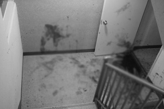 2019년 5월 4일 세종시 고운동의 한 아파트에서 층간소음 문제로 15층에 살던 40대 남성이 아래층에 살던 주민에게 흉기를 휘둘러 다치게 한 사건이 발생했다. 사진 세종소방본부