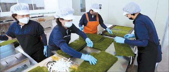 지난 2019년 하반기에 설립돼 위생적이고 체계적으로 감태를 생산·가공·판매하고 있는 해품감태영어조합법인 가공시설 모습. [사진 중왕어촌계]