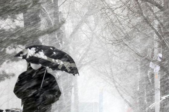 28일 오전 경기도 과천시내에 눈이 내리고 있다. 바람이 강해 눈이 대각선으로 관찰됐다. 뉴스1