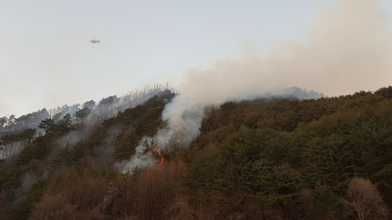 20일 오후 3시50분쯤 강원 정선군 여량면 구절리 야산에서 불이나 헬기 12대가 투입돼 진화작업을 벌이고 있다. [연합뉴스]