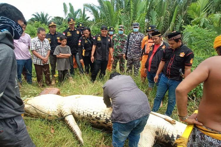 지난 4일(현지시간) 보르네오섬 동칼리만탄 무아라 벵갈로 마을의 강에서수영을 하다가 실종된 8세 소년이 사라진 지점에서 100m 떨어진 곳에서 숨진 채로 악어의 배 속에서 발견됐다. 일간 콤파스 캡처