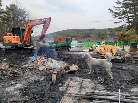 4일 오후 배우 이용녀씨의 유기견 보호소의 모습. 지난달 28일 이곳에서 발생한 화재로 유기견 중 일부가 폐사하고 이씨의 생활 공간이 전소됐다. 함민정 기자