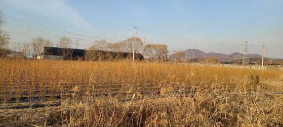회식자리에서도 땅 투자 얘기…기업문화로 본 LH 투기 의혹