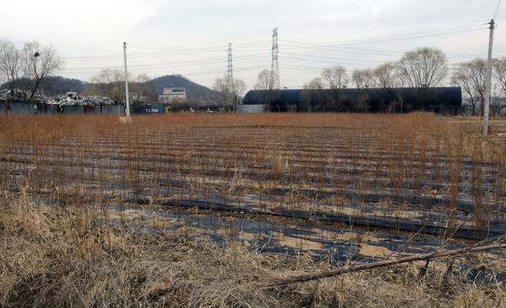 한국토지주택공사(LH) 직원들이 사들인 경기도 시흥시 과림동 소재 농지의 모습. 뉴스1