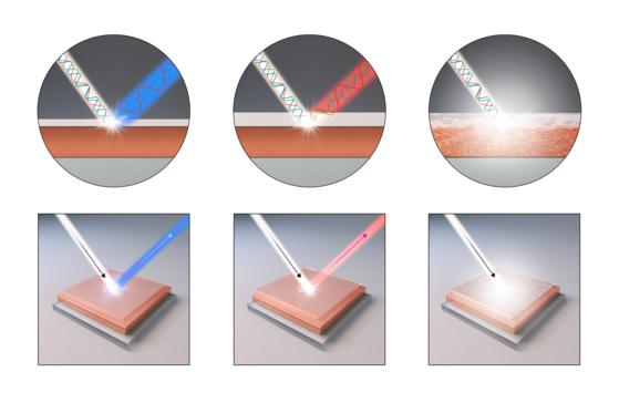 구리 박막 산화층이 두께에 따라 다른 파장(색)의 가시광선을 반사하면서 색을 띄는 원리. [사진 IBS]