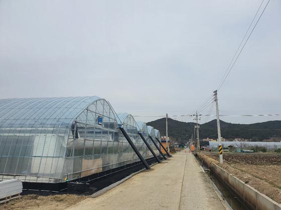 2022년 조성되는 김해 흥동 도시첨단산업단지에 2018년부터 외지인 소유의 비닐하우스가 하나씩 등장하기 시작했다. 이은지 기자