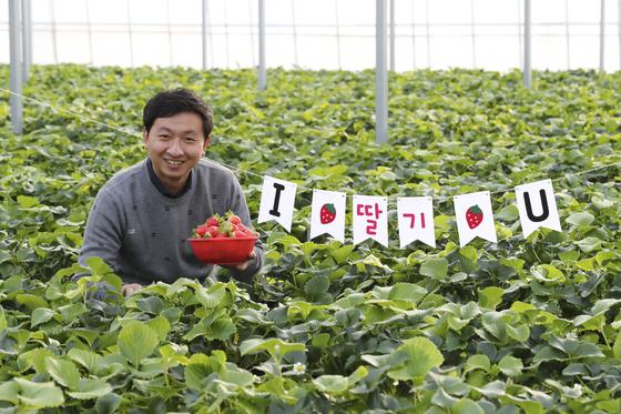 오성일 피크니코 대표가 경기도 여주시 흥천면 복대리에 있는 스마트팜 딸기농장에서 방금 딴 딸기를 바구니에 담아 들고 웃고 있다. 임현동 기자