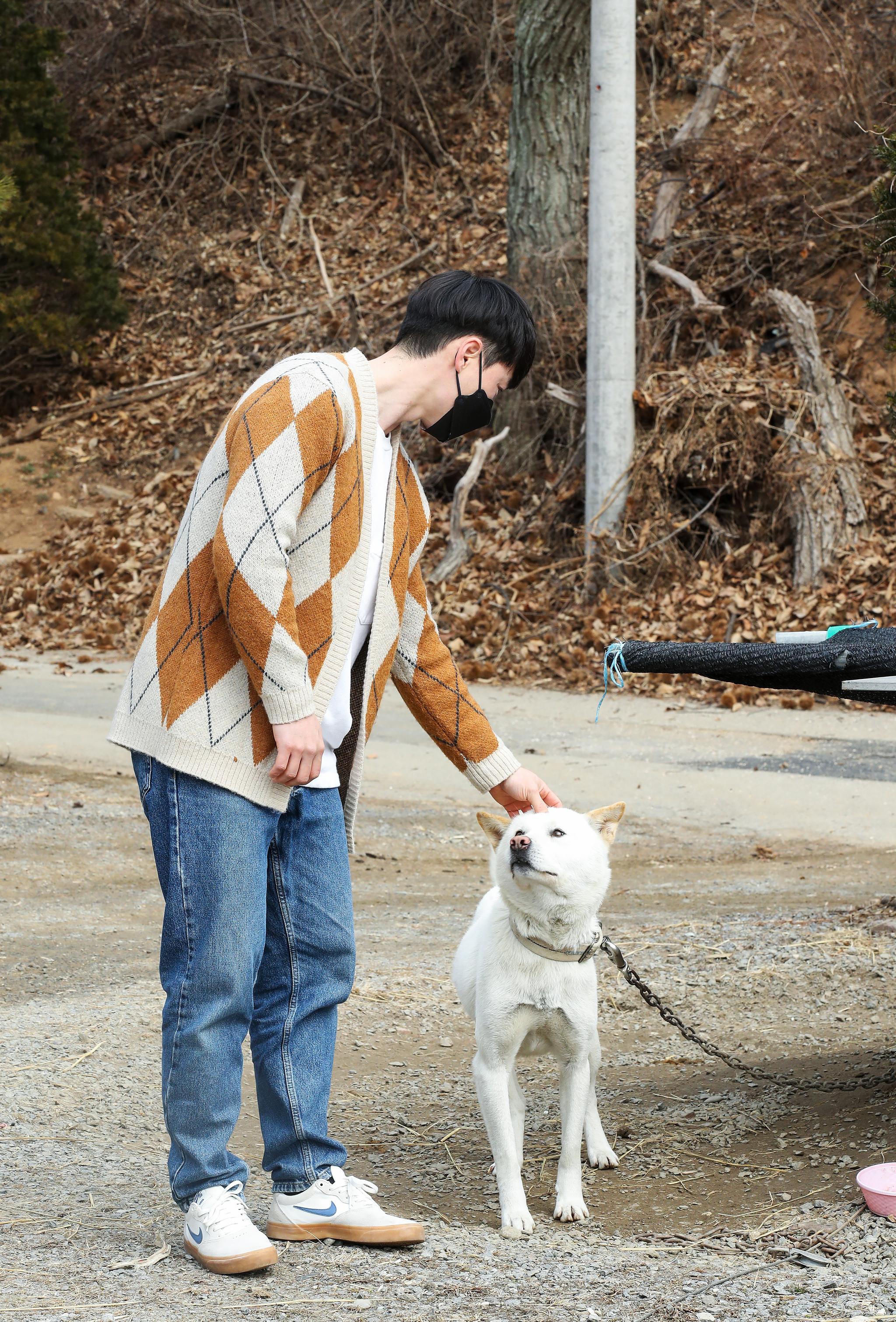 이재승 선우벌꿀 대표의 반려견 베리. 블루베리 농장에서 데려오면서 베리라고 이름을 지었다. 우상조 기자