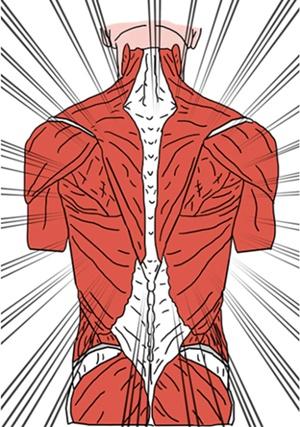 코어(허리부위) 근육이 잘 만들어진 선수는 동작이 강하고 빠르다. 빠르게 가속하고 빠르게 감속하며 방향을 전환하고 강력한 힘을 발휘한다. [사진 pixabay]
