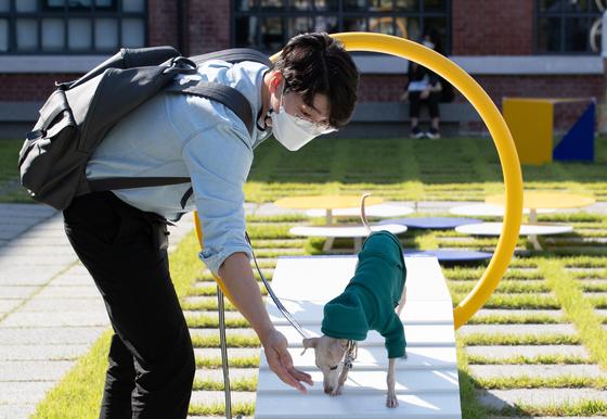 설채현 수의사와 반려견이 지난해 9월 서울 국립현대미술관에서 열린 '모두를 위한 미술관, 개를 위한 미술관'에서 전시작품을 살펴보고 있다. 뉴스1