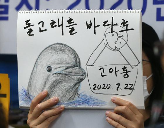 핫핑크돌핀스 등 동물보호·환경단체가 그린 돌고래 '고아롱' 그림. 고아롱은 지난해 7월 울산 남구 장생포고래생태체험관에서 폐사했다. [연합뉴스]