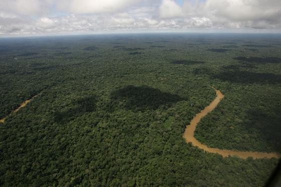 에콰도르 북동부 야수니 국립공원, 정글로 덮인 이 곳은 유네스코 생물권 보전지역으로 지정돼 있다. AP=연합뉴스