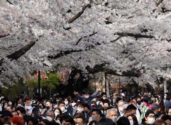 27일 벚꽃 명소인 일본 도쿄 우에노 공원이 사람들로 북적이고 있다. [로이터=연합뉴스]
