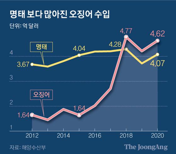 명태 보다 많아진 오징어 수입. 그래픽=신재민 기자 shin.jaemin@joongang.co.kr
