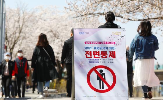 올해도 봄꽃 축제 대부분이 취소됐다. 그러나 작년처럼 완전히 통제하지는 않았다. 서울 여의도 봄꽃축제도 취소됐으나 추첨으로 뽑힌 3500여 명은 입장할 수 있다. 뉴스1